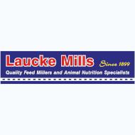 Laucke